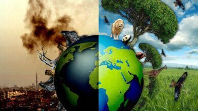Photo of İnsanların, Doğayı Olduğu Gibi Bırakması ve Koruması İçin 10 Sebep!