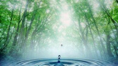 Photo of Suyun Bilmediğimiz Bir Hafızası Var!