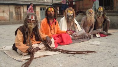 Photo of Farklıklar Ülkesi Hindistan'a Gitmek İçin 10 Sebep