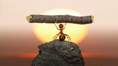 Photo of Kendinize Olan Güveninizi Arttıracak 4 Yol