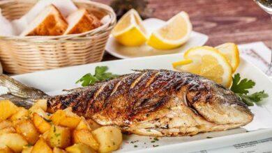 Photo of Balık Yemek Zekayı Arttırır Mı?