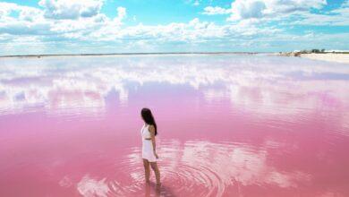 Photo of Şaşırtıcı Ama Gerçek: Dünyadaki Pembe Göller