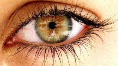 Photo of Göz Bebeklerimiz Neden Büyür Ya da Küçülür?