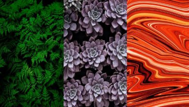 Photo of Renklerin Psikolojisi: 9 Rengin İnsanlar Üzerindeki Etkileri