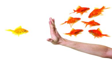 Photo of Öngörü Ve Ön Yargı Arasındaki Temel Farklar Nelerdir?