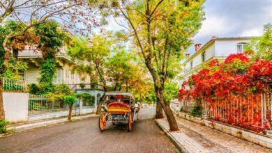 Photo of Araba Ve Trafiğin Olmadığı 13 Şehir Nerededir?