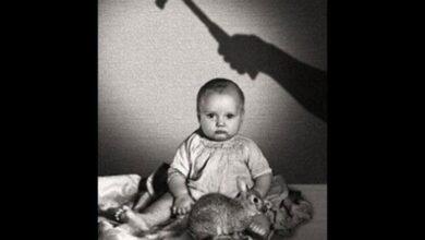 Photo of Küçük Albert Deneyi Nedir?