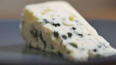 Photo of Küflü Peynir Neye İyi Gelir?