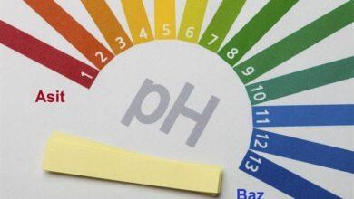 Photo of pH Nedir? Ne Anlama Gelir?