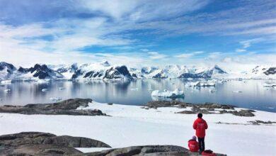 Photo of Antarktika Hakkında 15 İlginç Bilgi