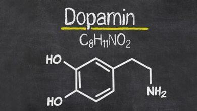 Photo of Dopamin Nedir? Nasıl Arttırılır?