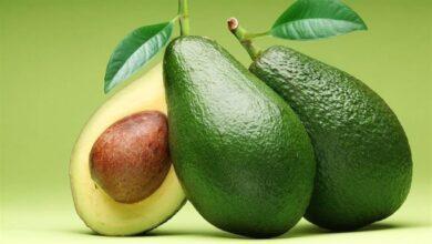 Photo of Avokado Meyvesi'nin Faydaları Nelerdir?