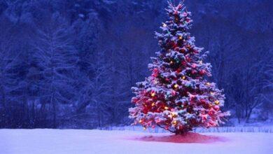Photo of Yeni Yılda Görülen 9 Yılbaşı Klişesi Nedir?