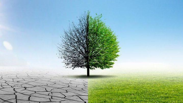 Paris İklim Anlaşması Paris İklim Anlaşması Nedir?
